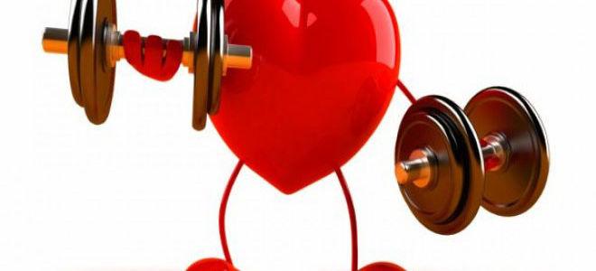 Здорово ли ваше сердце?