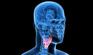 Артикуляционная гимнастика и другие методы восстановления речи после инсульта