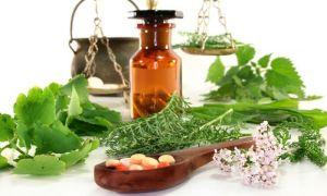 Рецепты лечения инсульта народными средствами