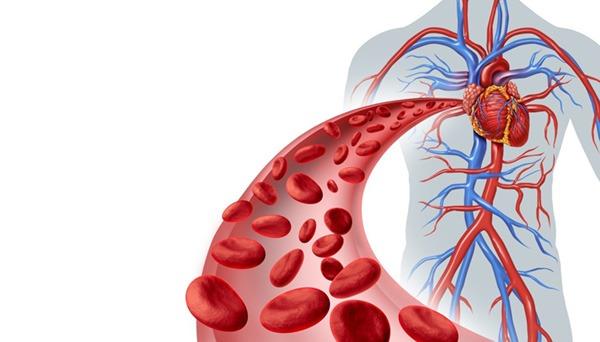 Атеросклеротический кардиосклероз: симптомы, диагностика и лечение