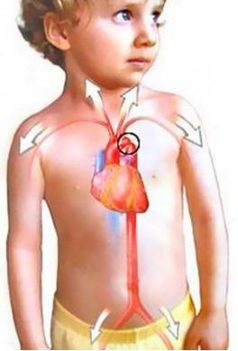 Тахикардия у детей: причины, симптомы, диагностика и лечение