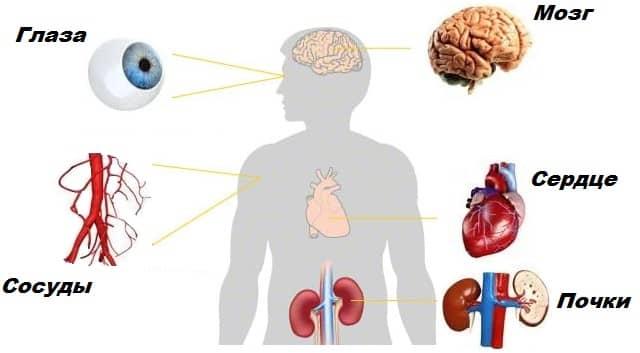 Симптомы эссенциальной гипертензии и ее отличия от лабильной и пограничной
