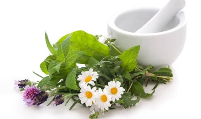 Как лечить гипертонию народными средствами - эффективные рецепты на травяной основе
