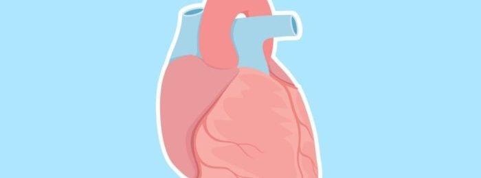 Симптомы и лечение диффузного кардиосклероза