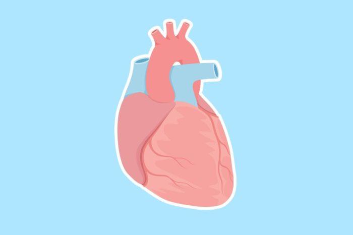 Мелкоочаговый кардиосклероз причина смерти - Все про гипертонию