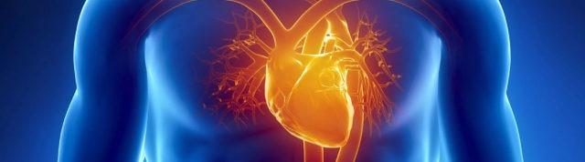 Что такое инфаркт миокарда, какие методы диагностики и лечения существуют?