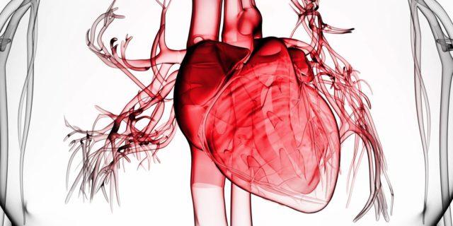 Признаки и лечение типичной формы инфаркта миокарда