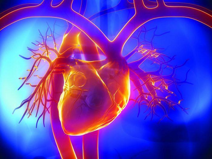 Восстановительная диета после инфаркта