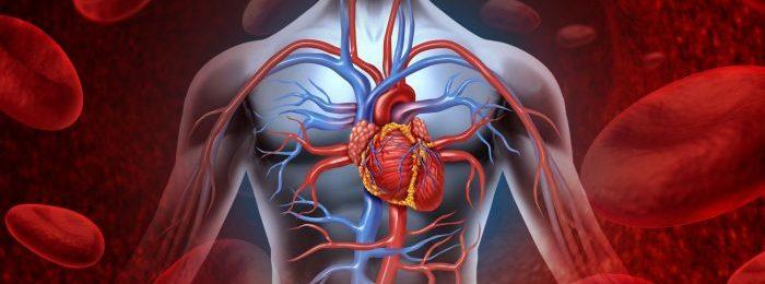 Уплотнение аорты: причины, симптомы и лечебная тактика