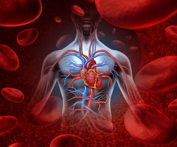Уплотнение корня аорты и створок аортального клапана
