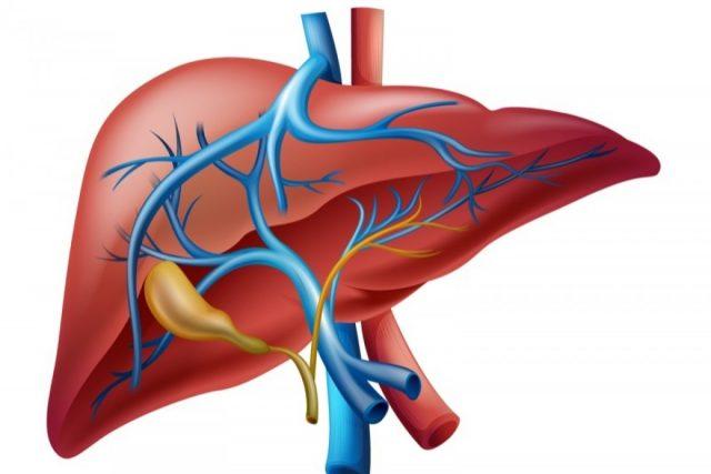 Билиарная гипертензия: причины, симптомы, диагностика и методы лечения
