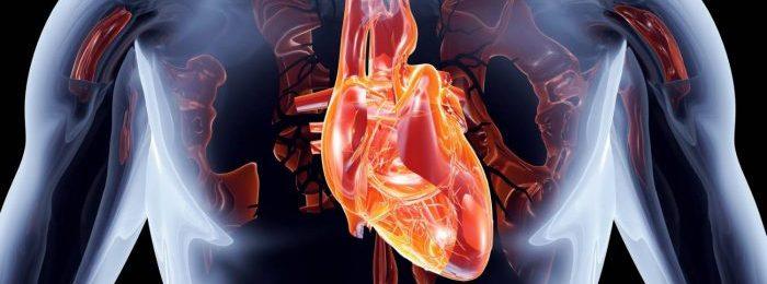 Как выявить и вылечить митральную регургитацию сердца?