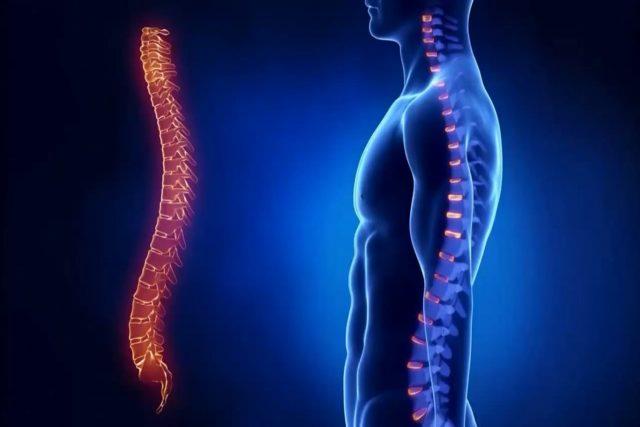 Синдром Педжета — Шреттера: причины развития, симптоматика и тактика лечения