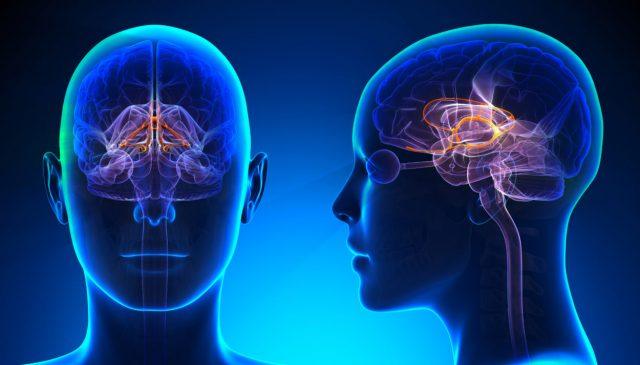 Симптомы и лечение инсульта мозжечка