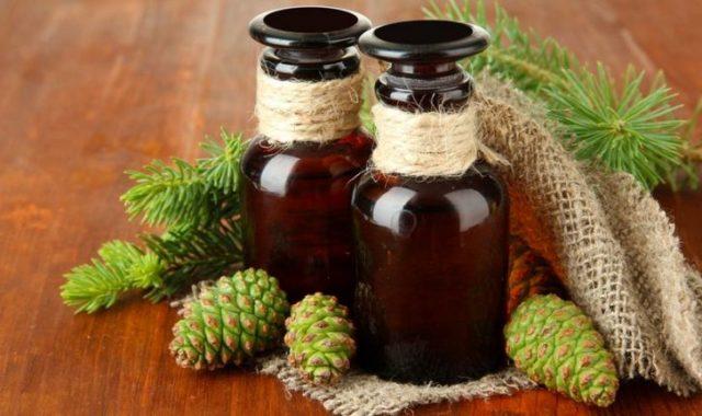 Рецепты на основе сосновых шишек для лечения инсульта
